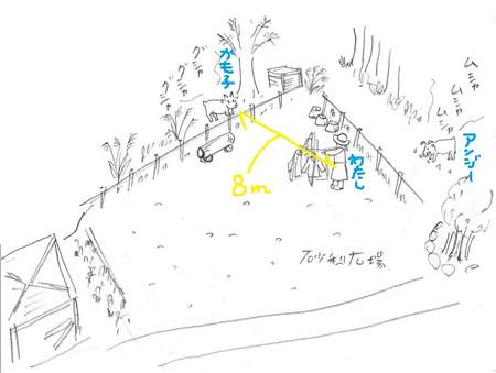 Kamoko11012