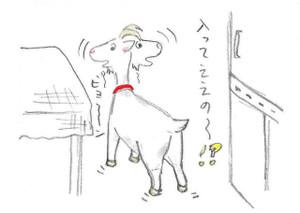 Bg_sinobikomu3